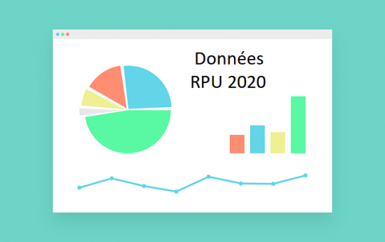 Panorama RPU 2020